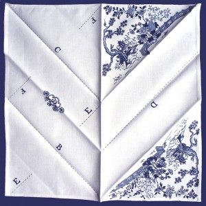 Julia Douglas, Fold It