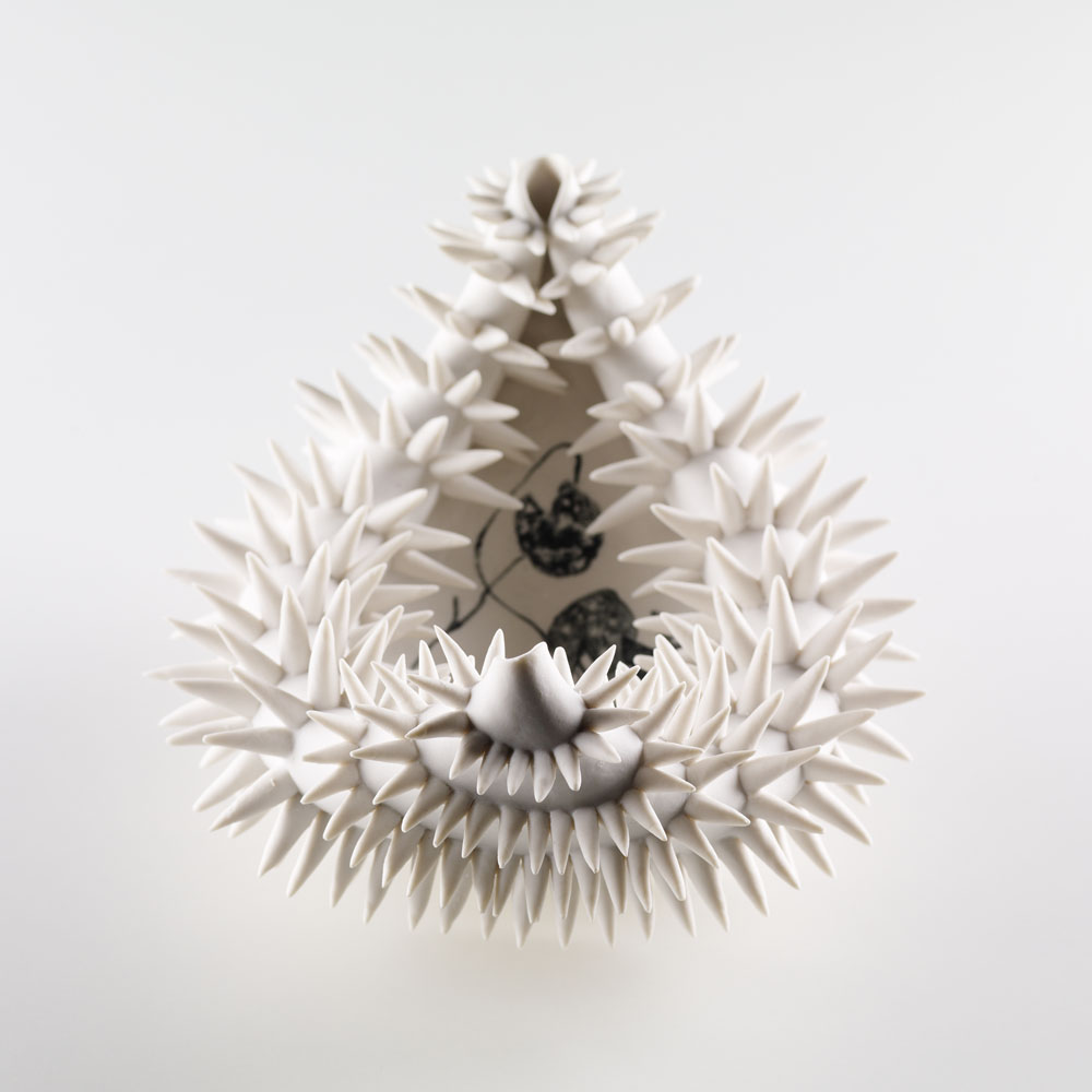 Lorna Fraser, Amazonica, H20 x W35 x D21cm. Inspired by the predatory spikes that cover the underside of the amazonica water lily leaf. Photo Shannon Tofts